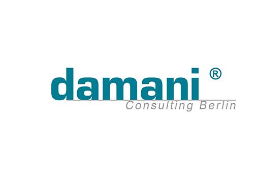 Client - damani consulting